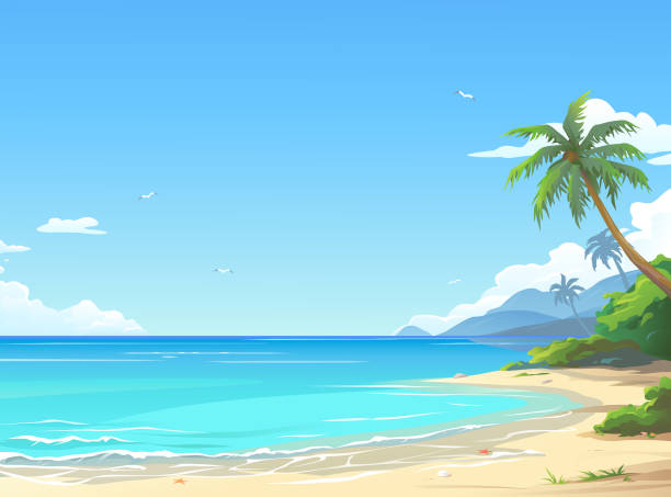 beautiful beach - beach stock illustrations