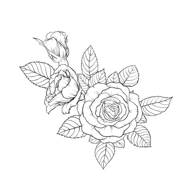 Blumen Tattoos Stock Vektoren Und Grafiken Istock