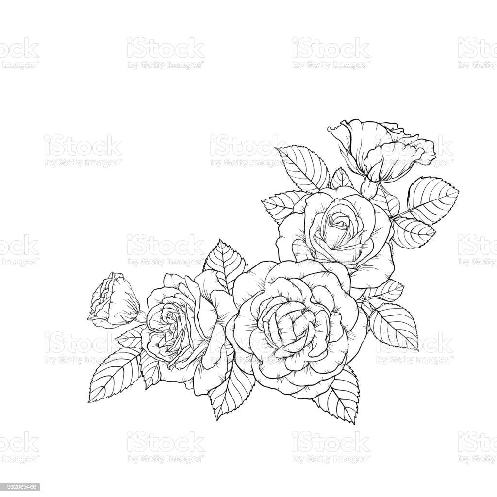 Güzel Siyah Ve Beyaz Buket Gül Ve Bırakır çiçek Aranjman