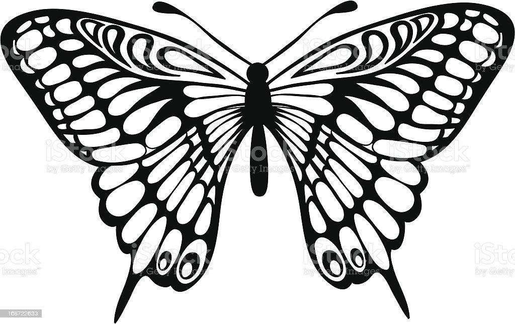 Ilustración De Hermosa Mariposa Aislado En Blanco Y Negro
