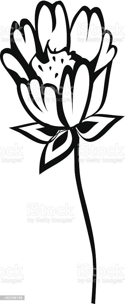 Belle Fleur Noir Et Blanc Dessin à La Main Vecteurs Libres