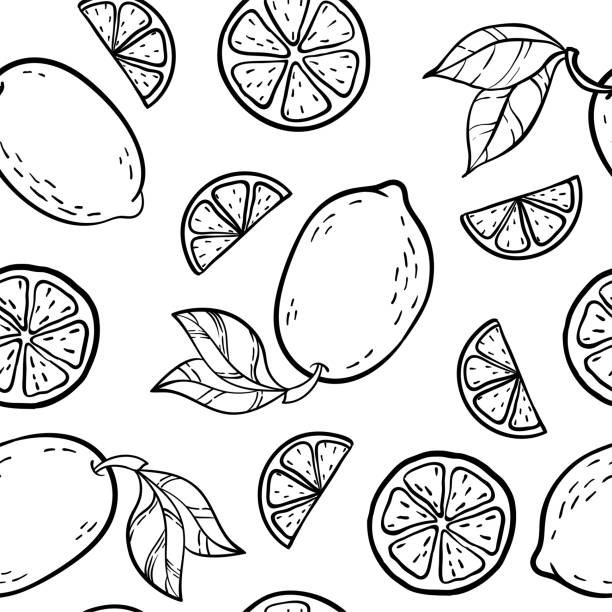 piękny czarno-biały bezszwowy wzór doodle z uroczym szkicem cytryn doodle. ręcznie rysowane modne tło. projektowanie w tle kartki z życzeniami, zaproszenia, tkaniny i tekstyliów. - cytryna stock illustrations