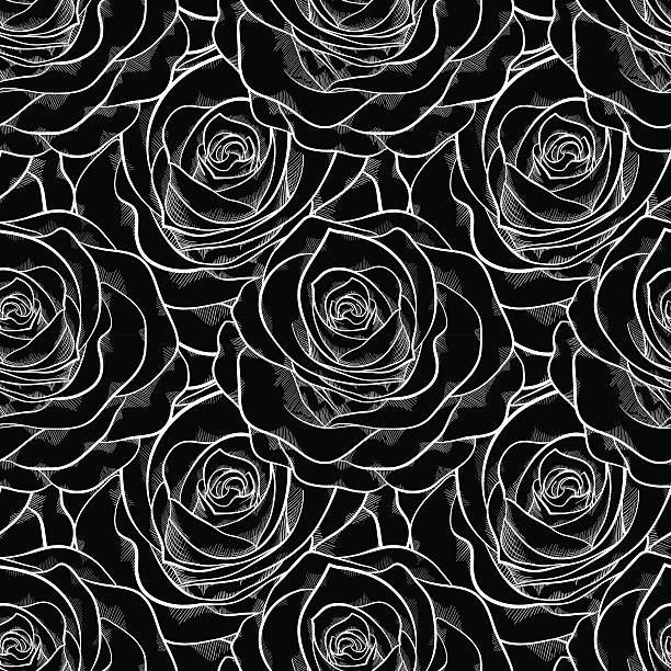 beautiful black and white seamless pattern in roses. vector art illustration