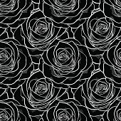 beautiful black and white seamless pattern in roses.