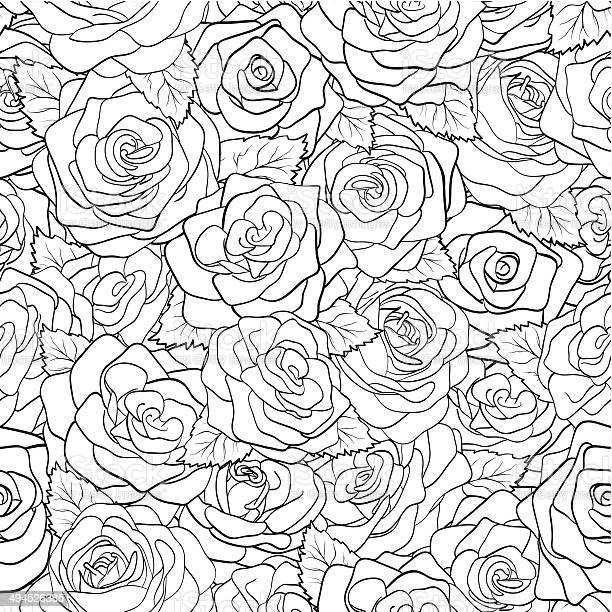 Beautiful black and white seamless pattern in roses with contours vector id494526385?b=1&k=6&m=494526385&s=612x612&h=i70bxlagkdkhv pgwql jft7xkrgo5xyvmaqgkhtzrk=