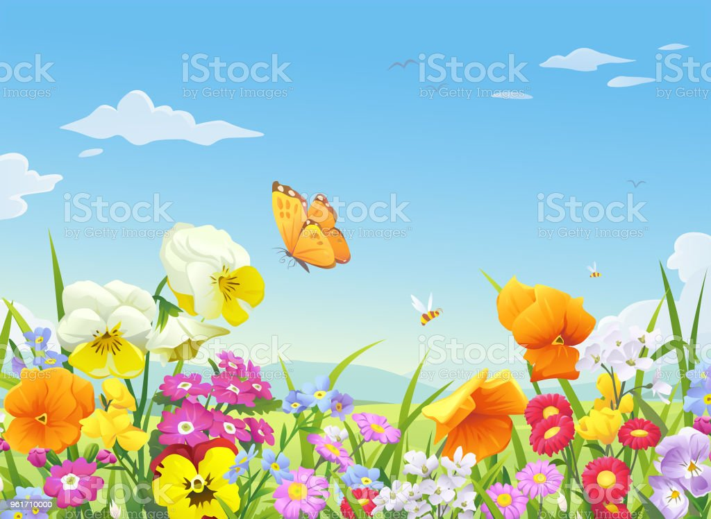 Beautiful Blooming Meadow - Royalty-free Agricultural Field stock vector