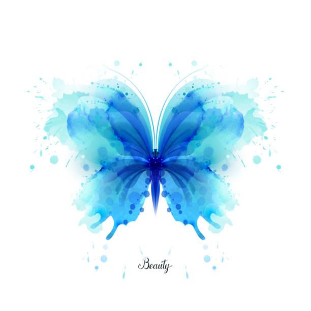 Linda aquarela abstrata translúcida borboleta azul sobre fundo branco. - ilustração de arte em vetor