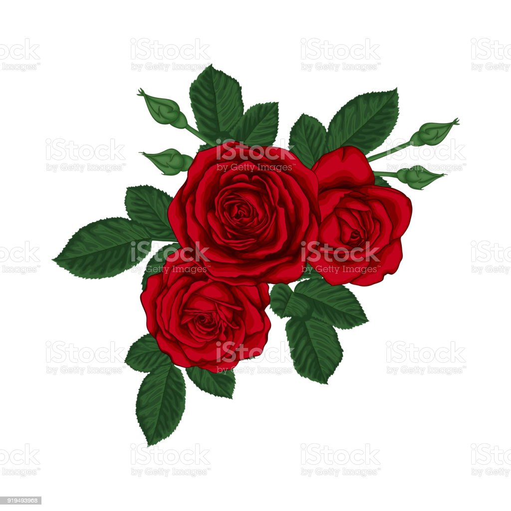 Beautiful bouquet with red roses and leaves floral arrangement beautiful bouquet with red roses and leaves floral arrangement design greeting card and invitation izmirmasajfo