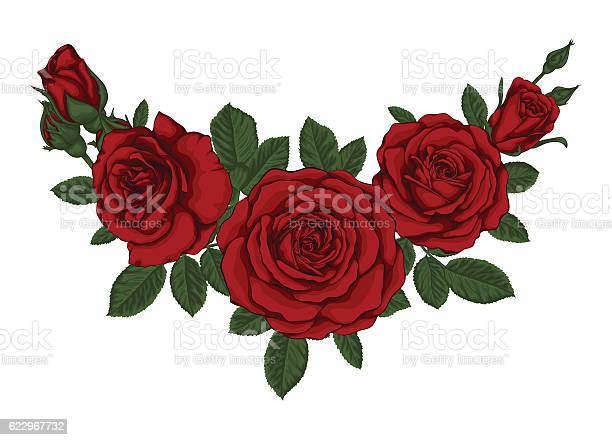 Beautiful bouquet with red roses and leaves floral arrangement vector id622967732?b=1&k=6&m=622967732&s=612x612&h=crebncaaambvkhvlturl4ee03yqqr4isb7t8vt109iy=