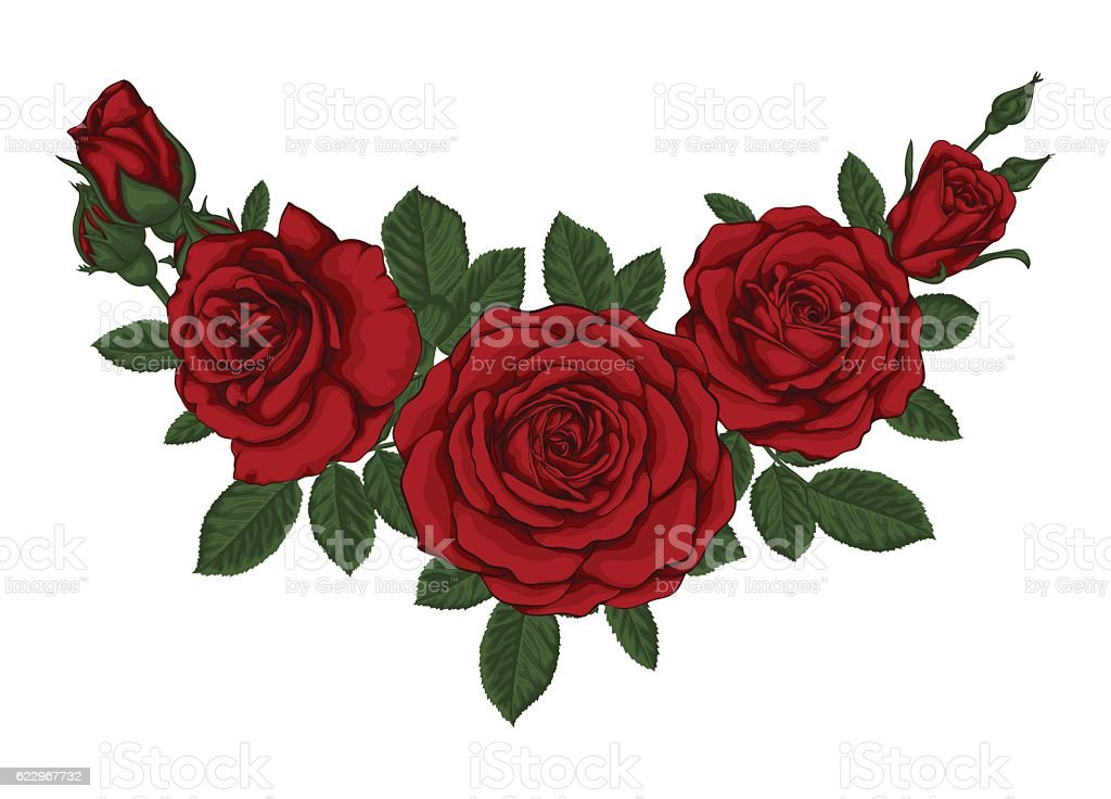 beautiful bouquet with red roses and leaves. Floral arrangement. - ilustración de arte vectorial