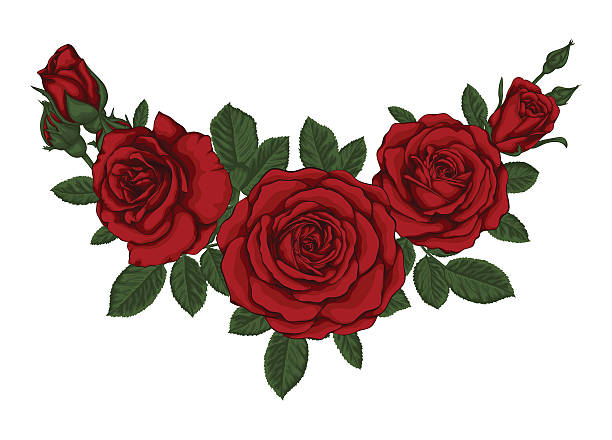 beautiful bouquet with red roses and leaves. Floral arrangement. – Vektorgrafik