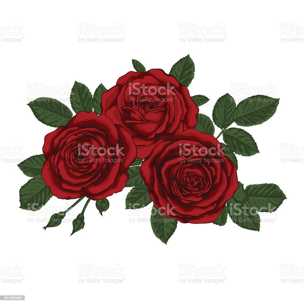 Beautiful Bouquet With Three Red Roses And Leaves Floral Arrangement Royalty Free Stock