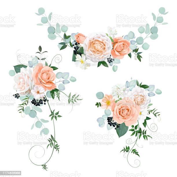 Beautiful bouquets with pastel roses vector id1174838966?b=1&k=6&m=1174838966&s=612x612&h=ubbkn9lg gtxvlswf jtve5qmbqhcz8virrpegufase=