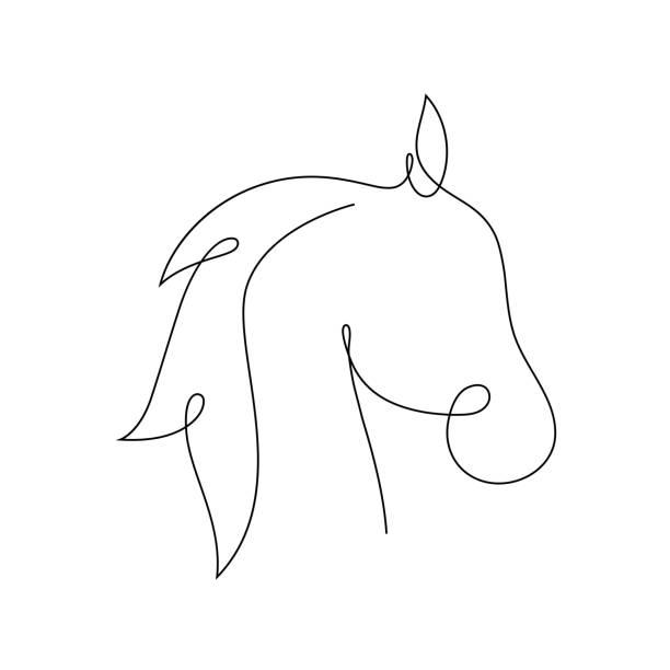 ilustrações de stock, clip art, desenhos animados e ícones de beautiful continuous line horse art design vector - um animal