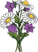 Beautiful daises and bell flowers on white background. Floral vector illustration.