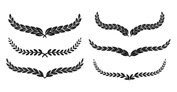 Beautiful decorative laurels vector set Beautiful decorative laurels vector set illustration bay leaf stock illustrations