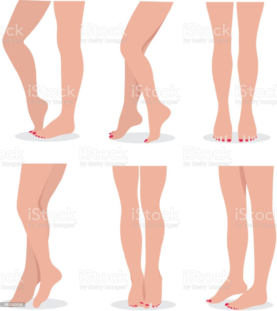 Beautiful Elegant Woman Legs And Feet In Different Poses Isolated ...
