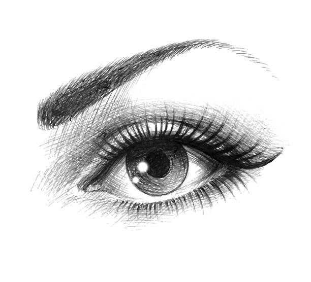 beautiful eyes of a young woman - close up stock illustrations, clip art, cartoons, & icons