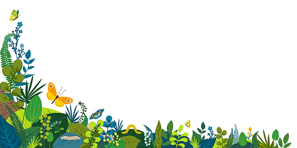 Beautiful floral background, corner frame. Green leaves, colorful flowers, caterpillar and butterflies. Spring, summer corner for social network, invitation, wedding, birthday. Vector illustration.