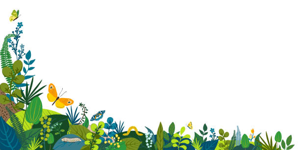 Beautiful floral background, corner frame. Green leaves, colorful flowers, caterpillar and butterflies. Spring, summer corner for social network, invitation, wedding, birthday. Vector illustration. Beautiful floral background, corner frame. Green leaves, colorful flowers, caterpillar and butterflies. Spring, summer corner for social network, invitation, wedding, birthday. Vector illustration backyard stock illustrations