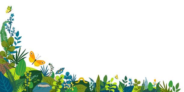 ilustraciones, imágenes clip art, dibujos animados e iconos de stock de hermoso fondo floral, marco de esquina. hojas verdes, flores de colores, orugas y mariposas. primavera, rincón de verano para la red social, invitación, boda, cumpleaños. ilustración vectorial. - backyard