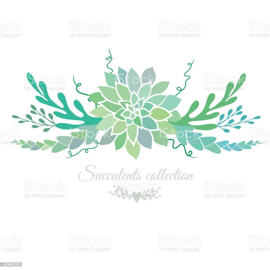 beautiful floral border with succulents royalty-free beautiful floral border with succulents stock vector art & more images of backgrounds