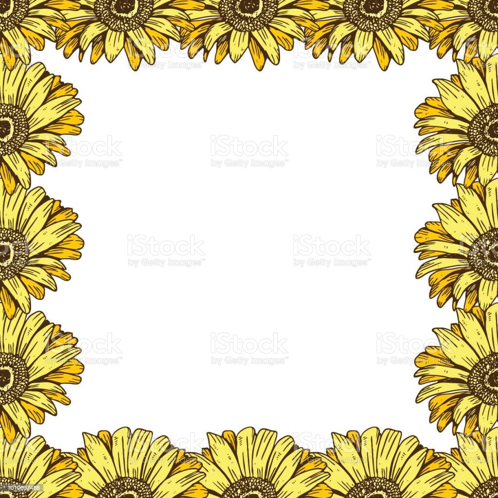 A Beautiful Floral Frame Of Yellow Daisies Flower Design For Cards