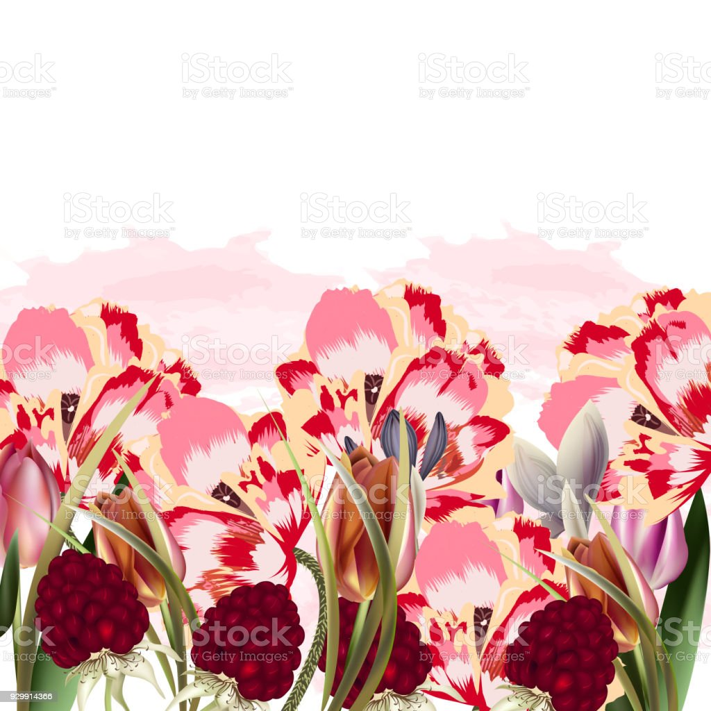 Beautiful Floral Illustration With Spring Flowers Stock Vector Art