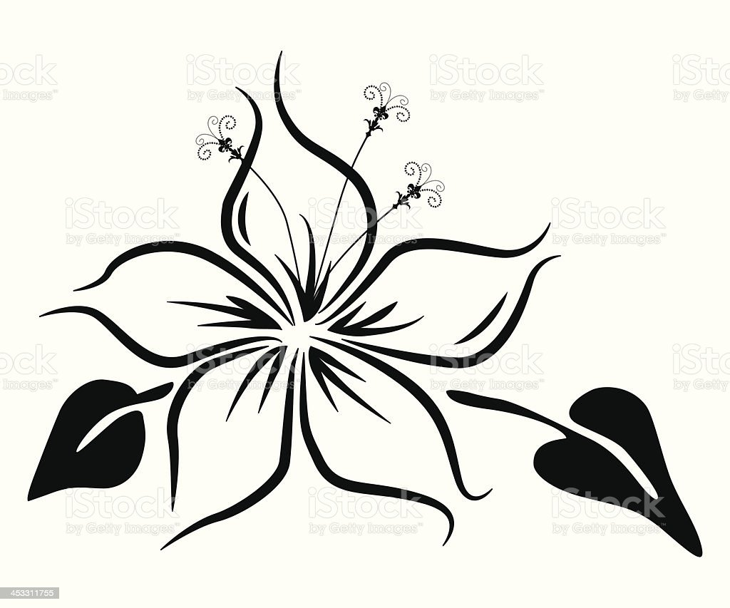 Beautiful Flower With White Background Stock Vector Art More