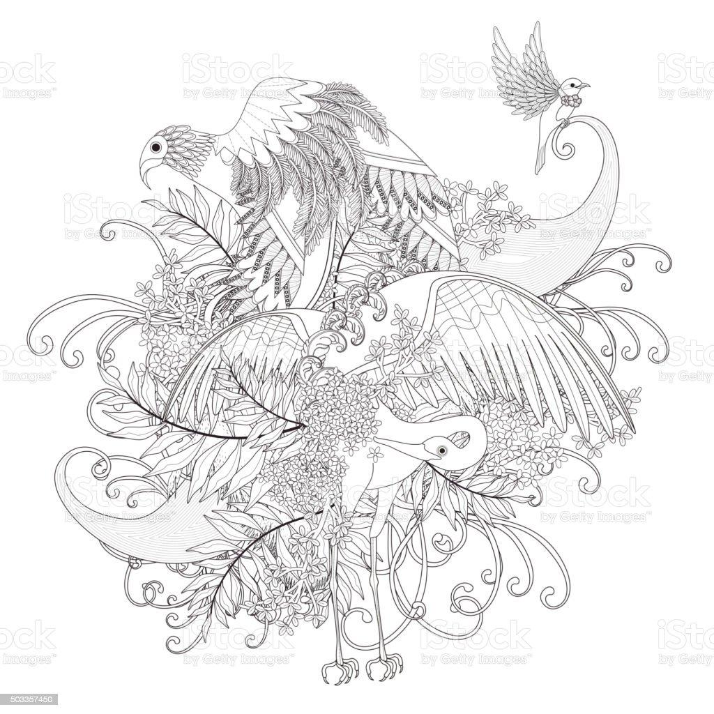 Coloriage Animaux Volants.De Magnifiques Oiseaux Volant Coloriage Page Vecteurs Libres De