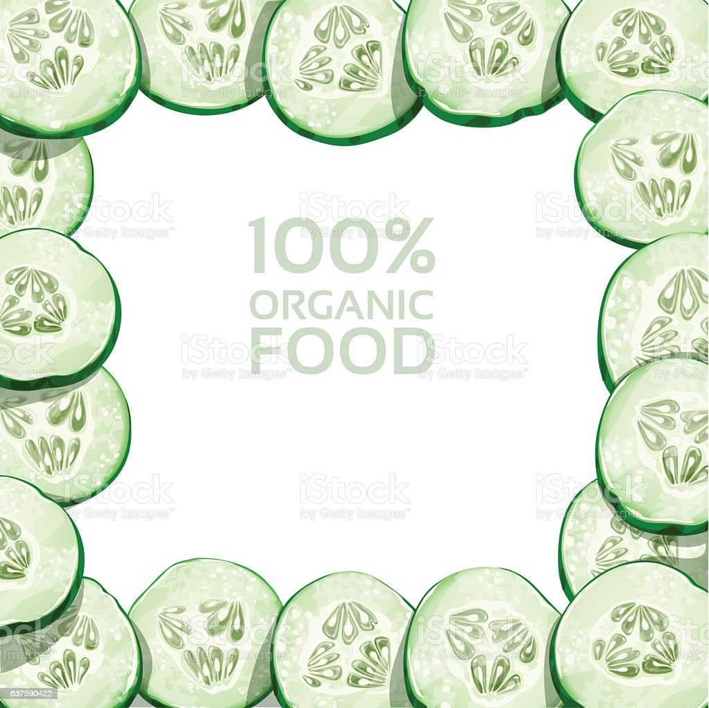 Beautiful frame from slices of fresh cucumber vector art illustration