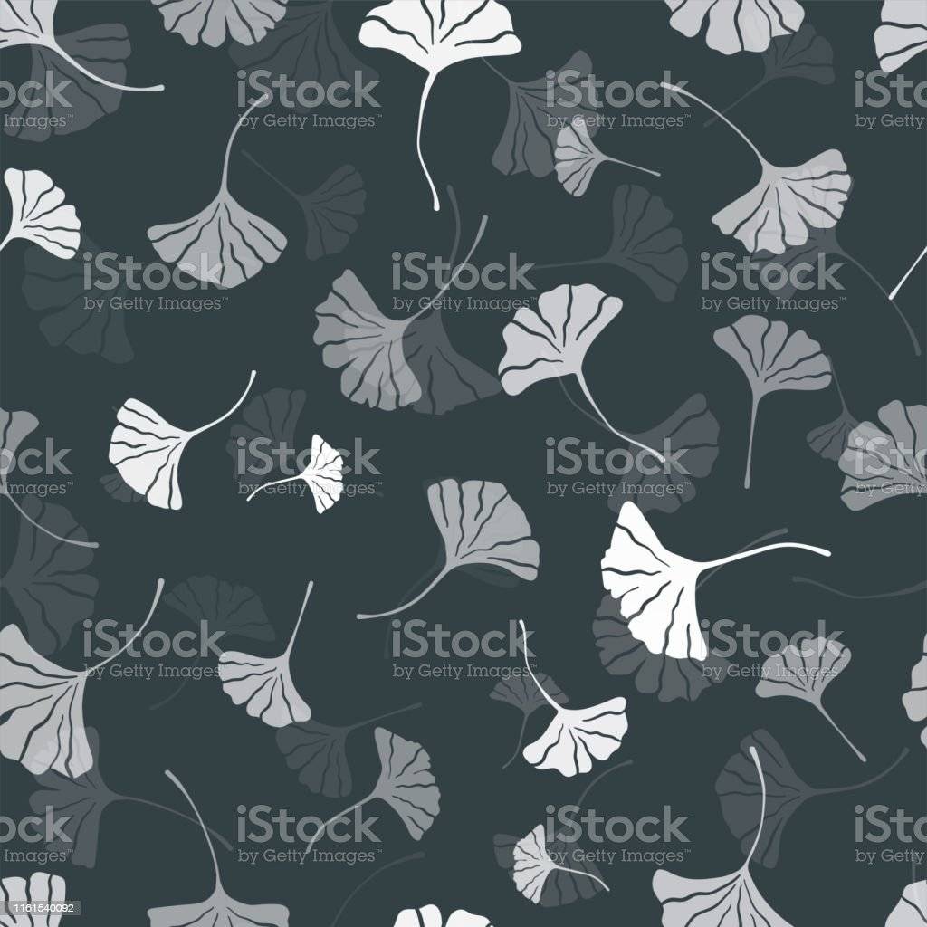 Beautiful Ginkgo Leaves Seamless Pattern Natural Black And White Autumn Background Great For Fashion Prints Health And Beauty Products Wallpapers Backdrops Banners Vector Surface Design Stock Illustration Download Image Now Istock