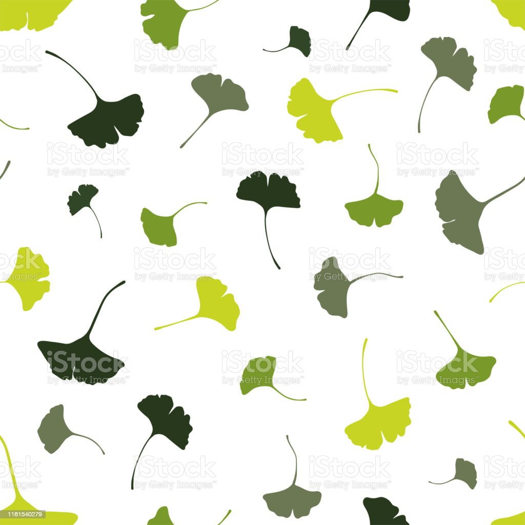 Beautiful Ginkgo Leaves Seamless Pattern Natural Green Autumn Background Great For Fashion Prints Health And Beauty Products Wallpapers Backdrops Banners Vector Surface Design Stock Illustration Download Image Now Istock