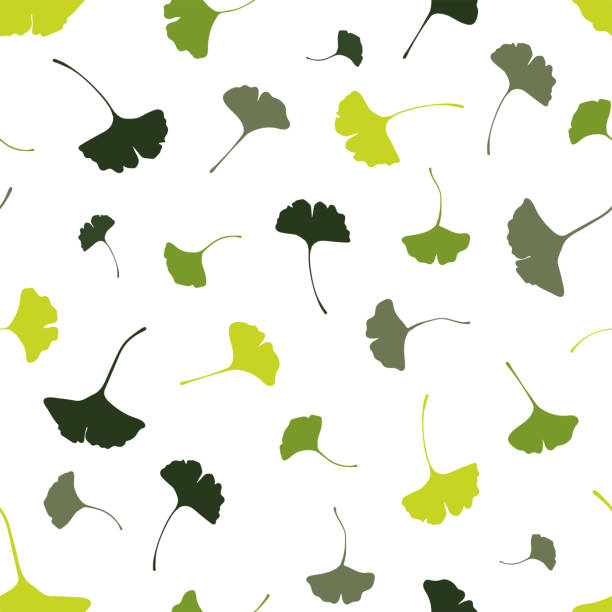 Beautiful Ginkgo leaves seamless pattern, natural green autumn background - great for fashion prints, health and beauty products, wallpapers, backdrops, banners - vector surface design Beautiful Ginkgo leaves seamless pattern, natural green autumn background - great for fashion prints, health and beauty products, wallpapers, backdrops, banners - vector surface design ginkgo stock illustrations
