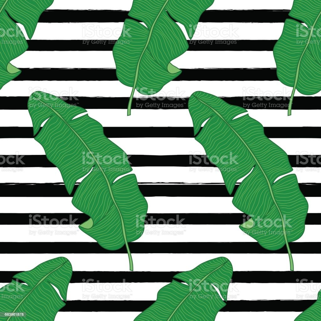 Beautiful green botanical seamless pattern with tropical foliage as banana palm tree leaves on striped background – Vektorgrafik