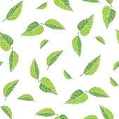 Beautiful Green tea seamless pattern