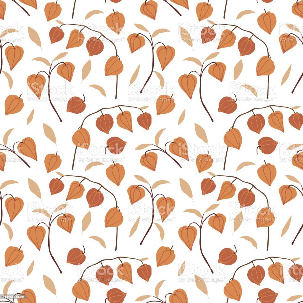 美しい手描き花シームレスパターンフィサリスフルーツ葉や枝は白い背景