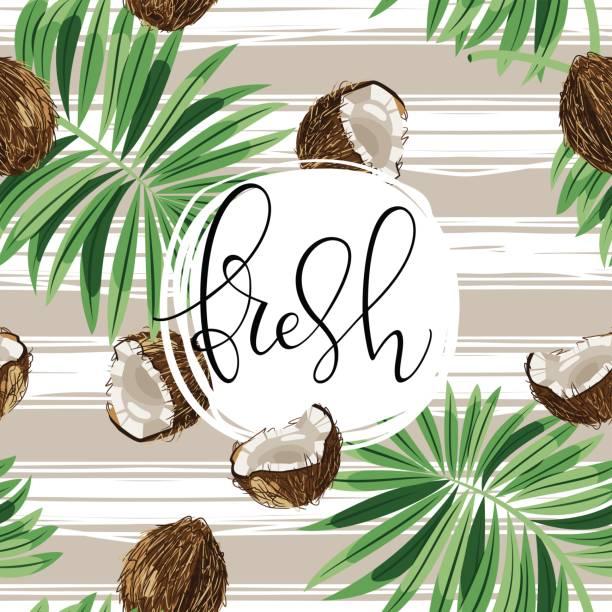 ilustrações, clipart, desenhos animados e ícones de bela mão desenhada ilustração vetorial com cocos - coqueiro