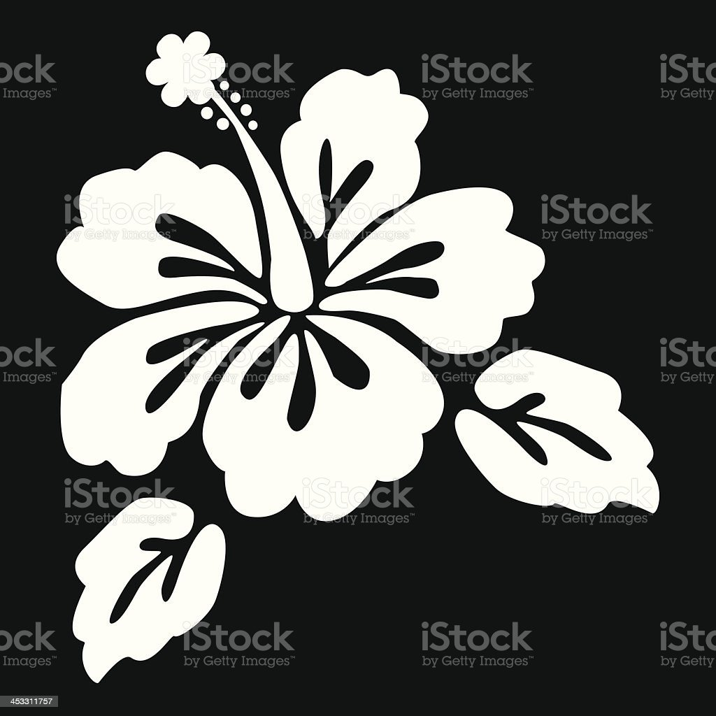 Beautiful hibiscus flower on a black background stock vector art beautiful hibiscus flower on a black background royalty free stock vector art izmirmasajfo
