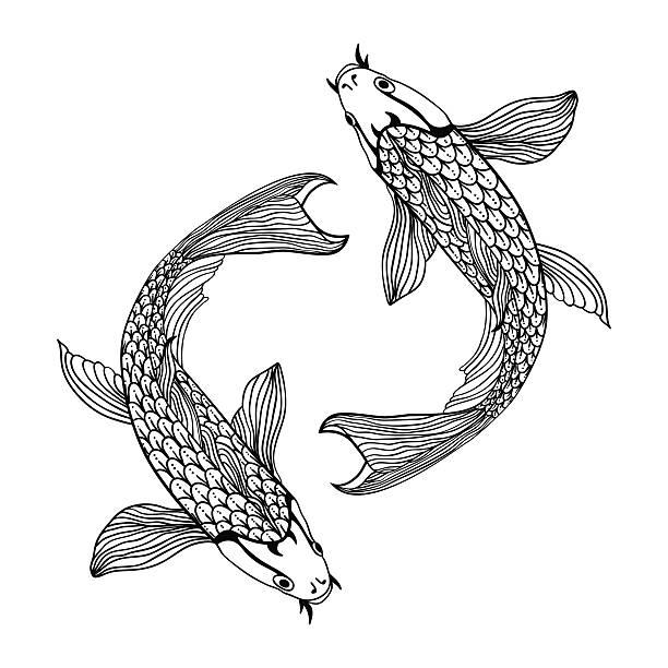 beautiful koi carp fish illustration in monochrome. Symbol of love A beautiful koi carp fish illustration in monochrome. Symbol of love, friendship and prosperity. shy stock illustrations