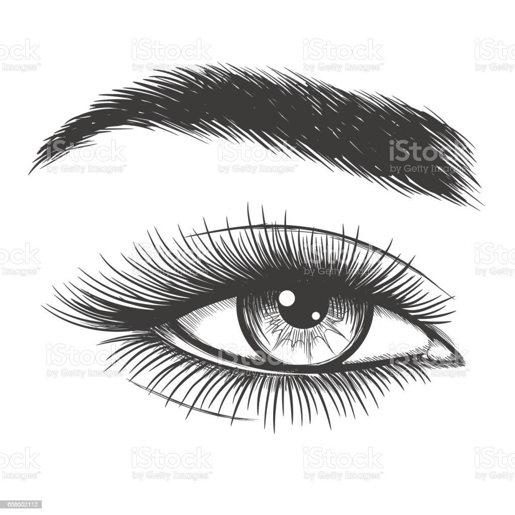 Schöne Dame Auge Skizze – Vektorgrafik