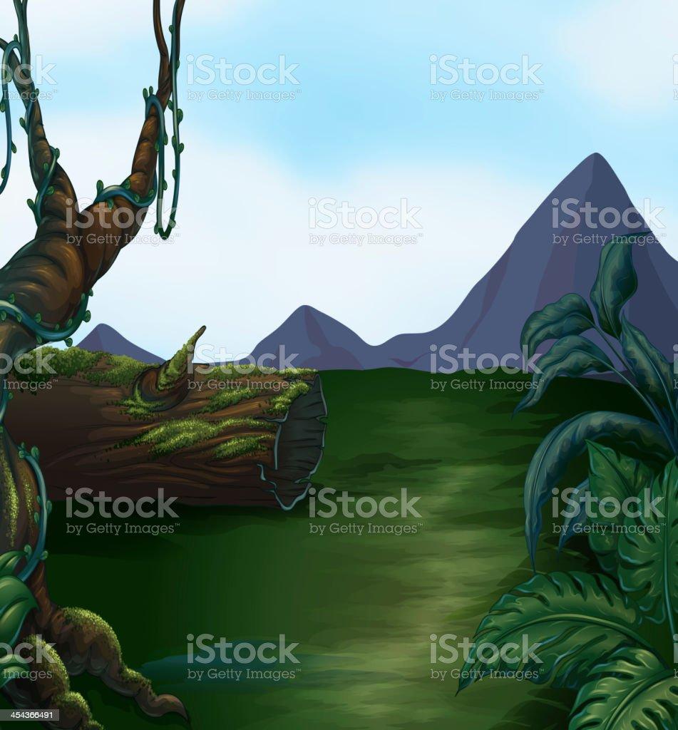 Bela paisagem de montanhas e - ilustração de arte em vetor