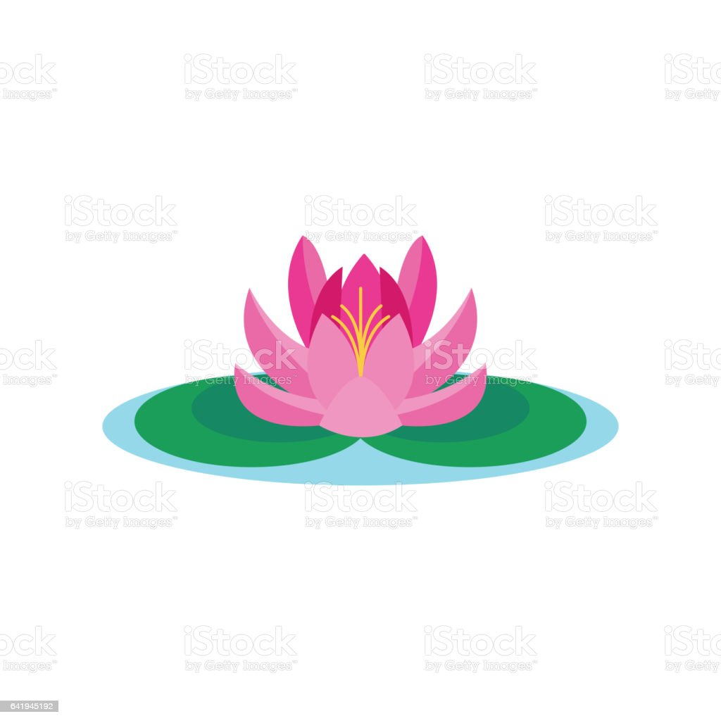 Beautiful lotus flower vector isolated on white background stock beautiful lotus flower vector isolated on white background royalty free beautiful lotus flower vector isolated izmirmasajfo