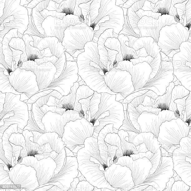 Beautiful monochrome black and white seamless background with flowers vector id525741577?b=1&k=6&m=525741577&s=612x612&h=zr8ypr2t47q0xkaocnpz3hlobc6w7dav7elds0lrwze=