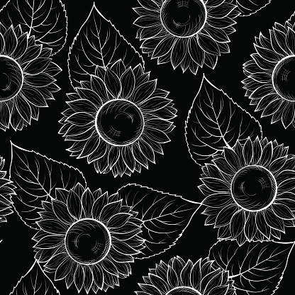 beautiful monochrome black and white seamless background with sunflowers.