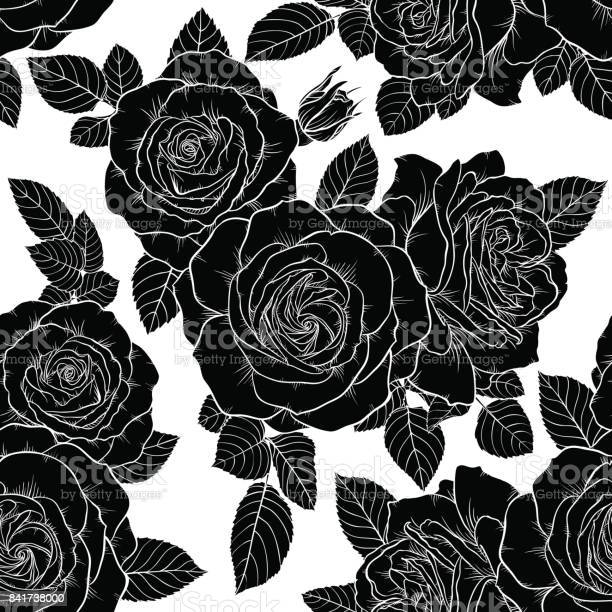 Beautiful monochrome black and white seamless pattern with roses vector id841738000?b=1&k=6&m=841738000&s=612x612&h=dns7zcank8lj h0miptw0brc4alxqrbvrgrnlmotqmm=