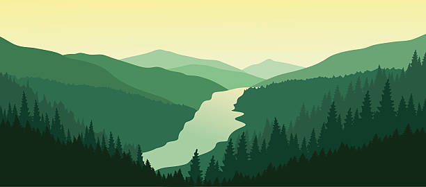 Beautiful mountain landscape with the river in the valley. Mountain landscape with green pine forest in the summer. Sunset in the mountains. Vector illustration. EPS 10.  valley stock illustrations