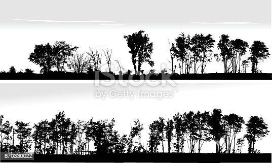 Panoramic Treeline in silhouette
