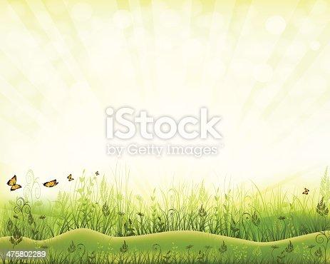 istock Beautiful Nature 475802289