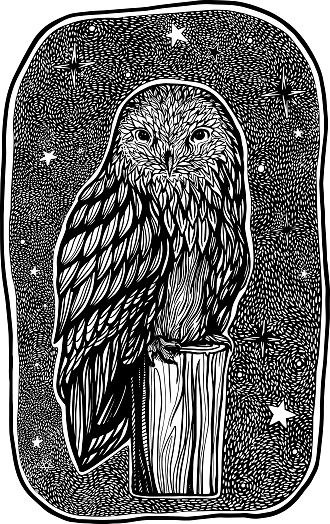 Beautiful owl sits on stump on cozy starry night. Hand drawn vector illustration. Single black graphic drawing. Detailed retro style picture isolated on white. Design for print, decor, cards, poster.